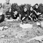 Le Gîte du Vigneron - ... déguster les crus du Petit Saint Vincent