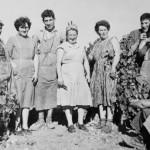 Le Gîte du Vigneron - Au sein d'une exploitation familiale depuis plusieurs génération